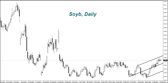Soyb, Daily